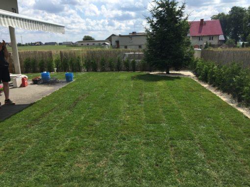 ogród w Pępowie
